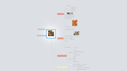 Mind Map: PREHISTORIA