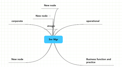 Mind Map: Snr Mgr
