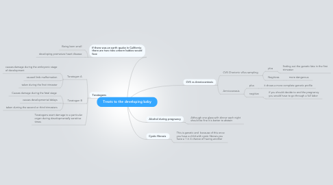 Mind Map: Treats to the developing baby