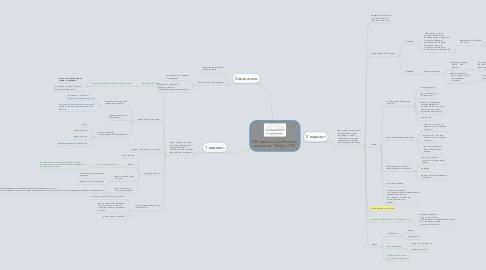 """Mind Map: VIP раздел для богатых  клиентов """"Инфо СПА"""""""
