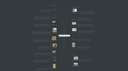 Mind Map: Causes of the American Civil War