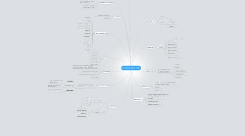 Mind Map: EL CATALÀ MÉS A PROP