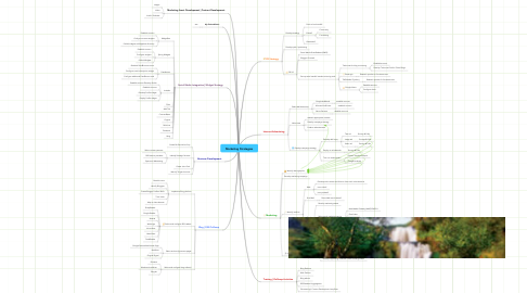 Mind Map: Marketing Strategies