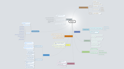 Mind Map: New born