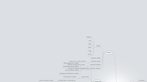 Mind Map: Tijden in Italiaans