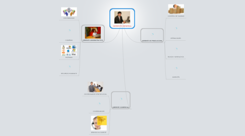 Mind Map: GERENTE GENERAL