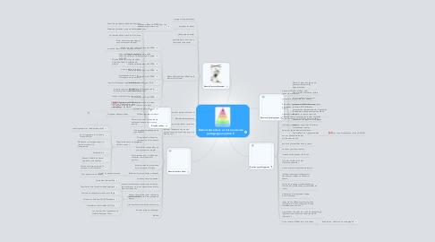 Mind Map: Besoins des élèves  et mise en œuvre pédagogique option F.