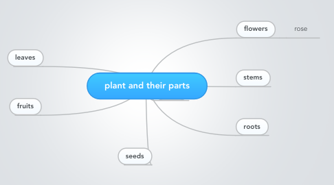 Mind Map: plant and their parts