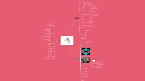 Mind Map: East Coast Wheelchair Curling Championship
