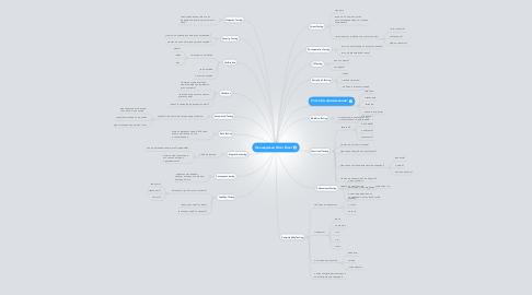 Mind Map: Овощерезка Nicer Dicer