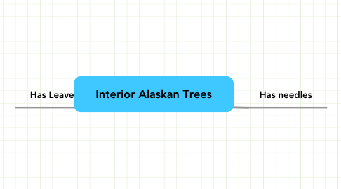 Mind Map: Interior Alaskan Trees