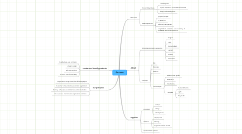 Mind Map: Our team