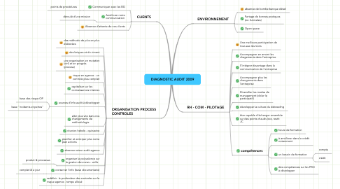 Mind Map: DIAGNOSTIC AUDIT 2009