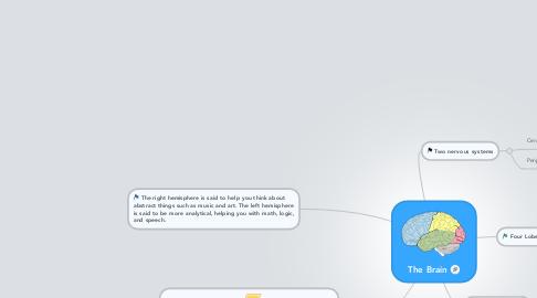 The Brain | MindMeister Mind Map