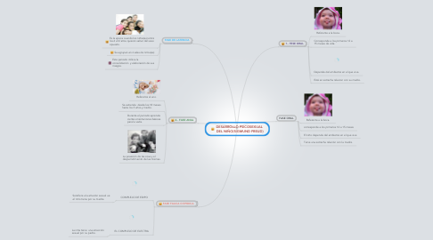 Mind Map: DESARROLLO PSICOSEXUAL  DEL NIÑO(SIGMUND FREUD)