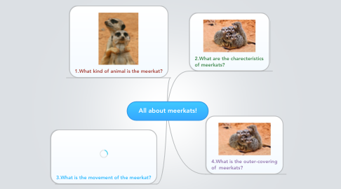 Mind Map: All about meerkats!