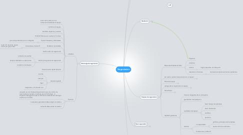 Mind Map: Negociacion