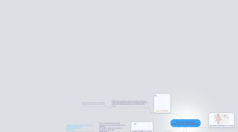 Mind Map: Qué es la Pubertad? Cuales son sus características?