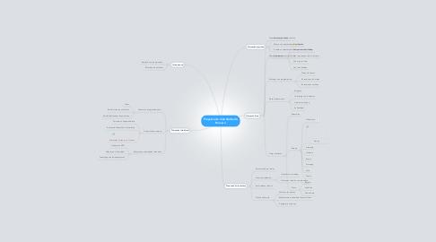 Mind Map: Proyecto de Vida Norberto Romero
