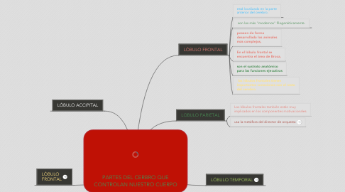 Mind Map: PARTES DEL CERBRO QUE CONTROLAN NUESTRO CUERPO
