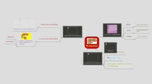 Mind Map: PANCREAS