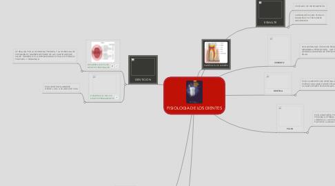 Mind Map: FISIOLOGIA DE LOS DIENTES