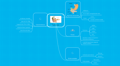 Mind Map: Pancreas