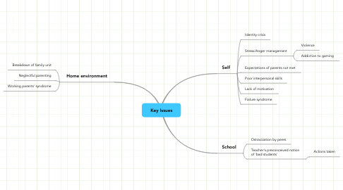 Mind Map: Key Issues