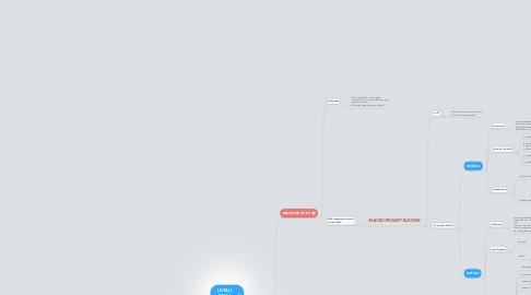 Mind Map: LIVELLI DELLA DIDATTICA