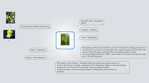 Mind Map: Buah Kedondong