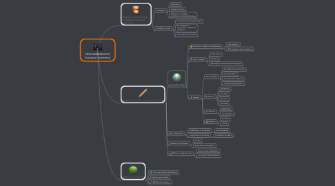 Mind Map: DESCUBRIMIENTOS Evaluation sommative