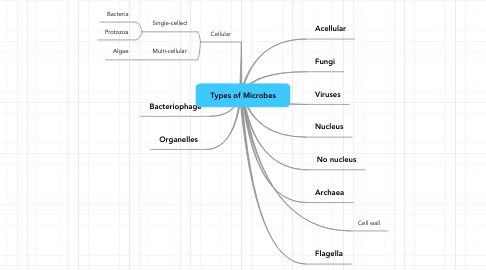 Mind Map: Types of Microbes