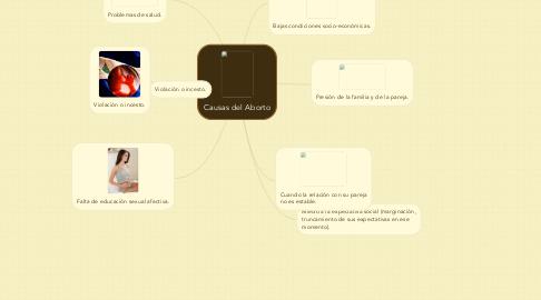 Mind Map: Causas del Aborto