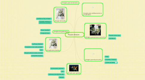 Mind Map: Flowers Shalom