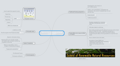 Mind Map: What are the benchmarks of forest  sustainability?