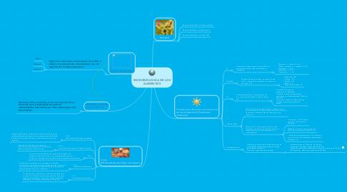 Mind Map: MICROBIOLOGÍA DE LOS ALIMENTOS