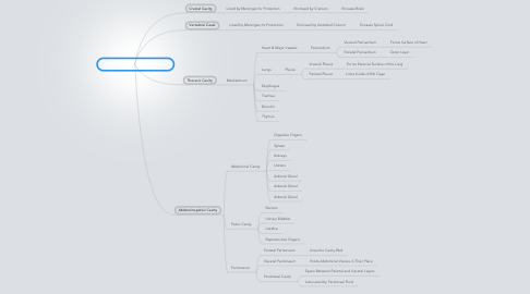Mind Map: Body Cavities & Membranes
