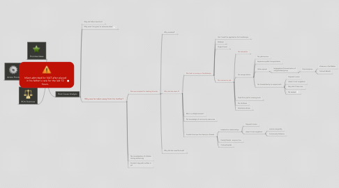Mind Map: Infant admitted for NAT after placed in his father's care for the last 72 hours.