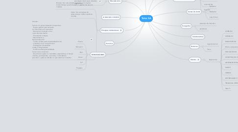 Mind Map: Totvs SA
