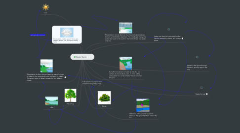 Mind Map: Water Cycle