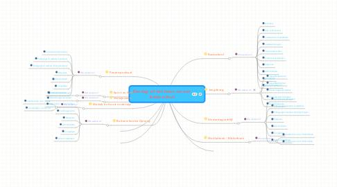Mind Map: Een dag uit het leven van een brede school