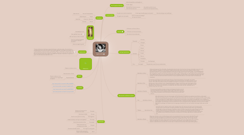 Mind Map: Aphrodite