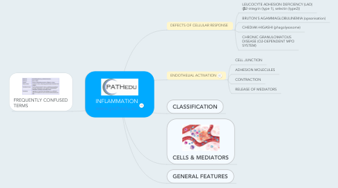 Mind Map: INFLAMMATION www.pathedu.eu