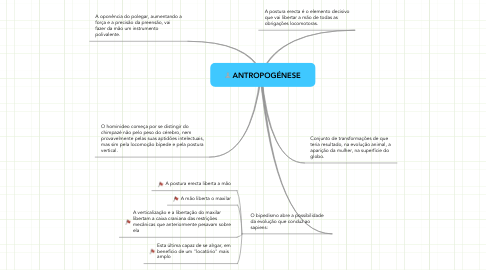 Mind Map: ANTROPOGÉNESE