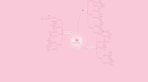 Mind Map: LES LAPINOUX