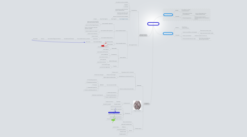 Mind Map: Cápsula interna
