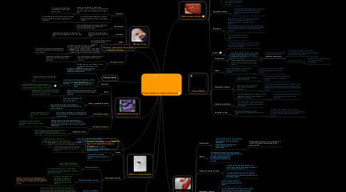 Mind Map: Enfermedades de origen alimentario
