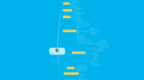 Mind Map: Elementos del currículum: