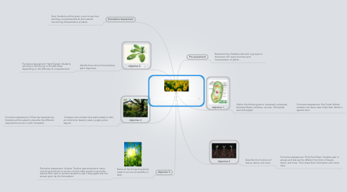 Mind Map: Assessment Plan for Characteristics of Plants 6-7th grade