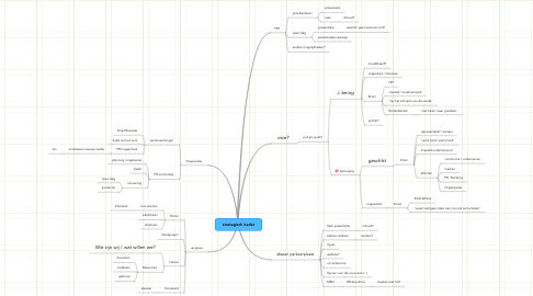 Mind Map: strategisch kader